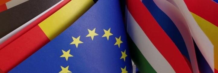 """Abschluss der Informationsreihe """"EUROPA und WIR"""" am 23. 1. 2013"""